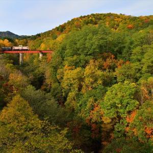 秋色散歩......1【時空列車】