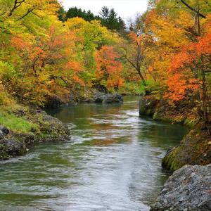 秋色散歩......4【錦仙狭】