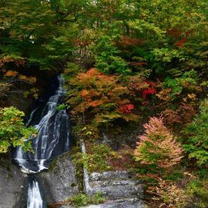 秋色散歩......7【滝の上公園】