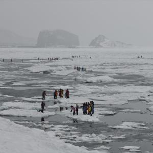 オホーツク、流氷の旅......3