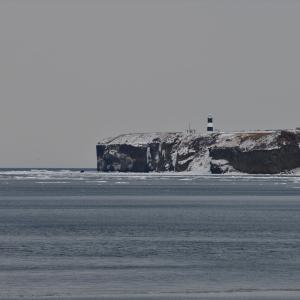 オホーツク、流氷の旅......4