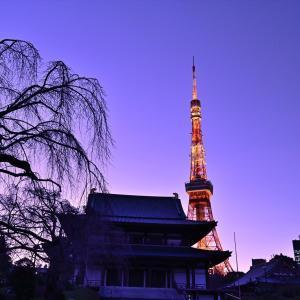 東京散歩.....1