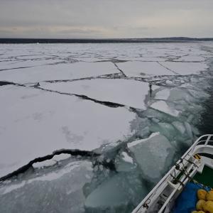 オホーツク、流氷の旅......8