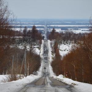 オホーツク、流氷の旅......10
