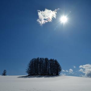 函館散歩、2020冬....7