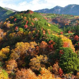 絶景、十勝岳の紅葉........2