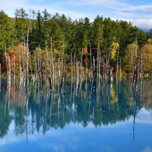 秋色、青い池.....1