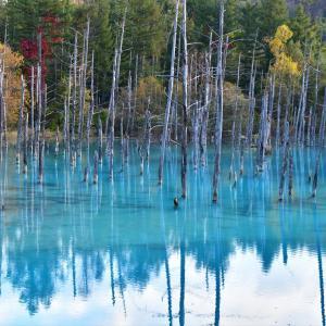 秋色、青い池.....2