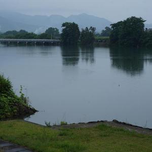 小雨の中の旧吉野川の風景