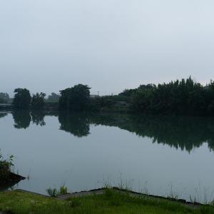 5;30分 旧吉野川の風景です