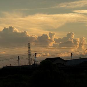 飽きもせず 夕陽の列車を撮りに