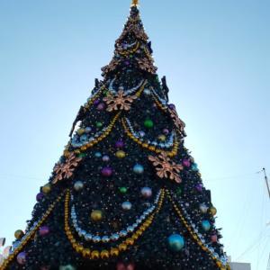 シーのクリスマス