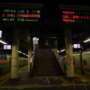 東海道線踊り子号の世代交代、E261系サフィーロ踊り子号@田町車両センター