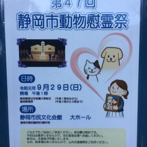 明日は、静岡市動物慰霊祭です