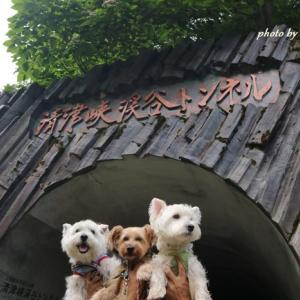 フク家の夏休み第一弾☆清津峡集合~8月15日