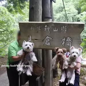 夏休み第一弾 ☆ 秘境 秋山郷 見倉橋 ~8月15日
