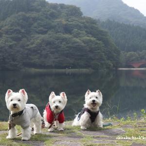 坂本ダム・碓井湖 ☆ 10月4日ニックん&クリームちゃん家との秋の旅行
