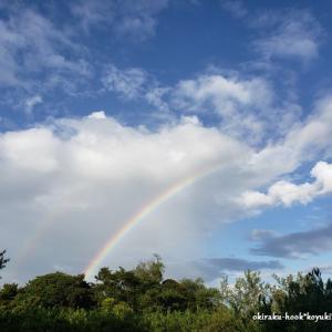 虹を見ながらお散歩です。