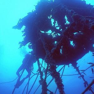 宜名真のフーヌイユ漁 始まります
