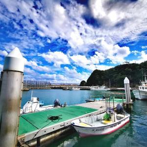 安田漁港で癒されて