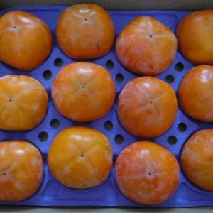 【優待選択品】今年の柿はあまり色艶が良くないな・・・ でも、美味しさは変わらず