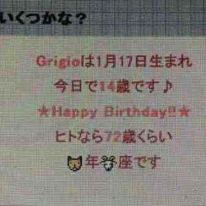 グリージョ14歳の誕生日