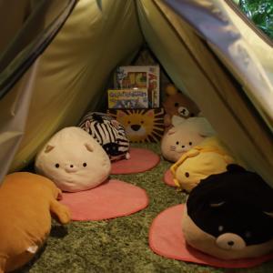 茜丸ちゃんキャンプ撮影会