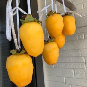 干し柿を沢山作りました