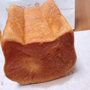 ☆ねこねこ食パン☆