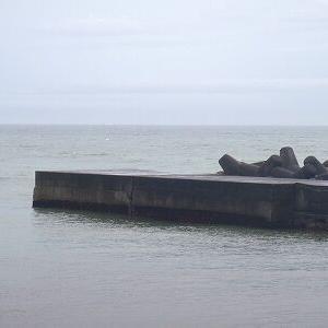 今日の白田堤防