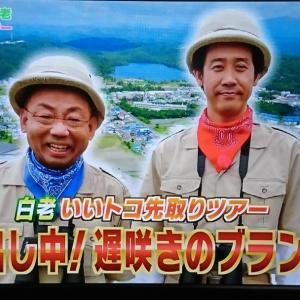 【視聴録】1×8いこうよ!「フカボリ探検隊 白老編③」6.11 テレ玉②