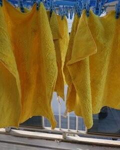 幸せの黄色い…