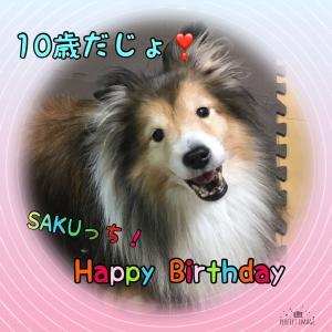 テンサイSAKUっちHappy Birthday!