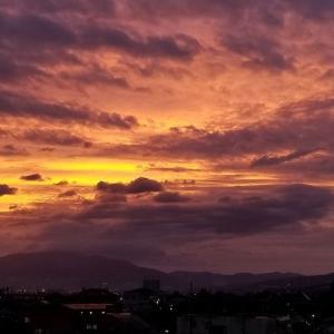 ◆紫色の夕焼け