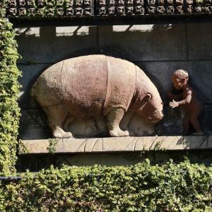 ◆名古屋の東山動物園で