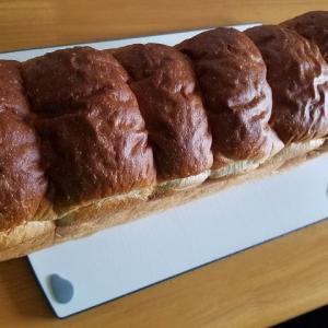 ◆パンネルのパンを