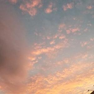 ◆夕焼け空で