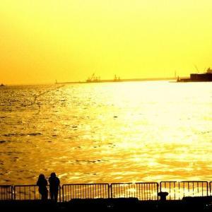 ◆黄金色の風景