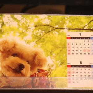 【みなさんは大丈夫~?】◎くーちゃんカレンダーの7月事情は~♪