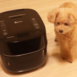 【4連休もくーちゃんとまったり】◎オリンピック観戦費用が、最新型炊飯器の購入費用に~♪