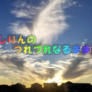 rebake(リベイク)5度(﹡ˆ﹀ˆ﹡)♡
