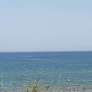 今日の海は…
