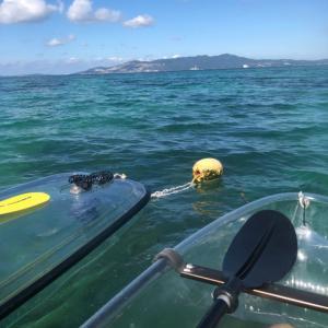 沖縄 透明カヤックで海へ