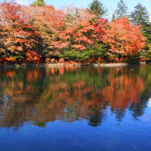 秋色に染まる軽井沢・上