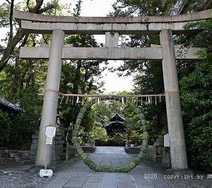 夏越しの祓え2020 京都