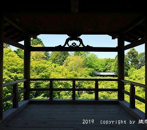 新緑の東福寺とサツキ