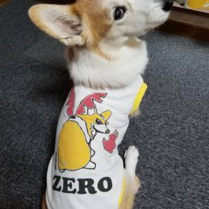 ZEROは本質を現すのか。
