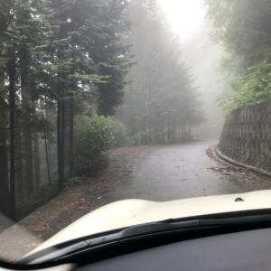 森へ。 @あきる野