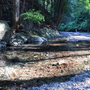 川へ。 @あきる野