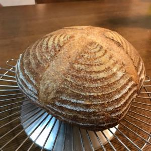 酒種酵母でパン作り
